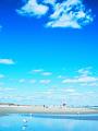 海の楽園フォト271