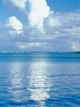 海の楽園フォト273