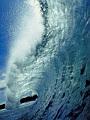海の楽園フォト295