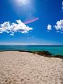 海の楽園フォト297