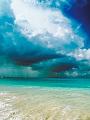 海の楽園フォト299