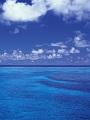 海の楽園フォト305