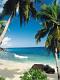 海の楽園フォト316