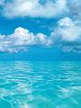 海の楽園フォト319