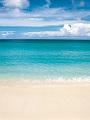 海の楽園フォト320