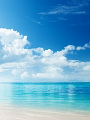海の楽園フォト323