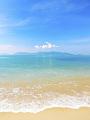 海の楽園フォト328