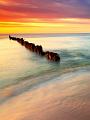 海の楽園フォト333