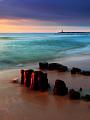 海の楽園フォト335