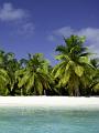 海の楽園フォト336