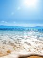 海の楽園フォト340