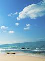 海の楽園フォト345