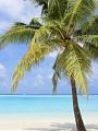 海の楽園フォト352