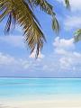 海の楽園フォト353
