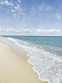 海の楽園フォト354