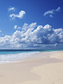海の楽園フォト355