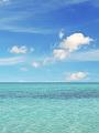 海の楽園フォト359