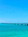 海の楽園フォト373