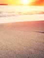海の楽園フォト377