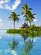 海の楽園フォト397