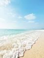 海の楽園フォト399