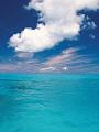 海の楽園フォト403