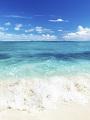 海の楽園フォト409