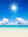 海の楽園フォト416