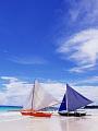 海の楽園フォト426