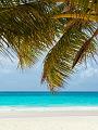 海の楽園フォト432