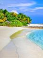 海の楽園フォト437