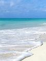 海の楽園フォト453