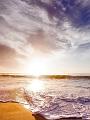 海の楽園フォト456