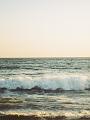 海の楽園フォト501
