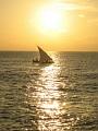 海の楽園フォト515